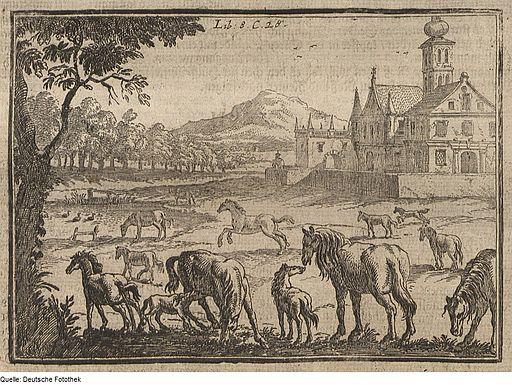 Wolf Helmhardt von Hohberg, Pferde auf der Weide, Kupferstich 1695 Quelle: Deutsche Fotothek/ Wikimedia Commons